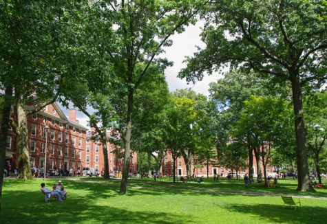 A grassy stretch between some of the buildings on the historic Harvard University campus.